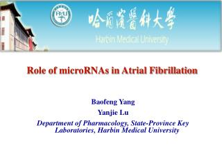 Role of microRNAs in Atrial Fibrillation