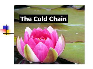 The Cold Chain