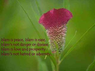 Islam is peace, Islam is ease, Islam's not danger or disease. Islam is love and prosperity. Islam's not hatred or advers