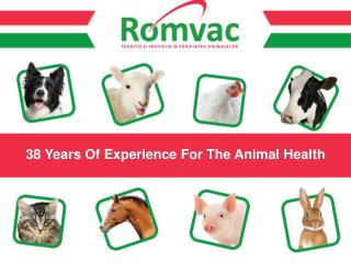 38 Years Of Experience For The Animal Health