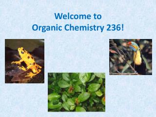Welcome to  Organic Chemistry 236!