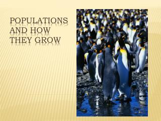 POPULATIONS AND HOW THEY GROW
