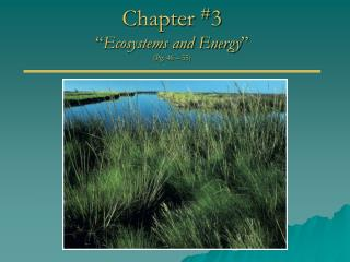 "Chapter  # 3 "" Ecosystems and Energy "" (Pg. 46 – 55)"