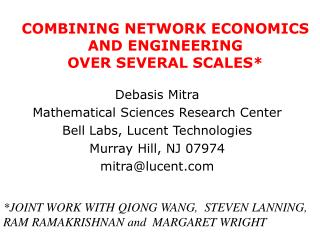 COMBINING NETWORK ECONOMICS AND ENGINEERING  OVER SEVERAL SCALES*