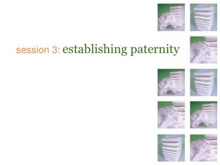 session 3: establishing paternity
