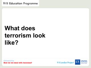 What does terrorism look like?