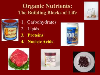 Organic Nutrients:  The Building Blocks of Life