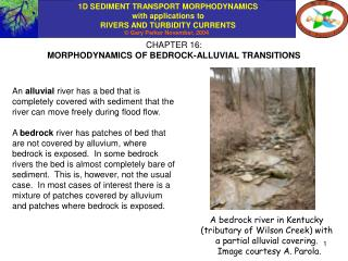 CHAPTER 16: MORPHODYNAMICS OF BEDROCK-ALLUVIAL TRANSITIONS