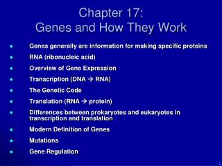 Chapter 17:  Genes and How They Work