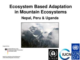 Ecosystem Based Adaptation in Mountain Ecosystems