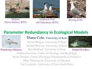 Parameter Redundancy in Ecological Models