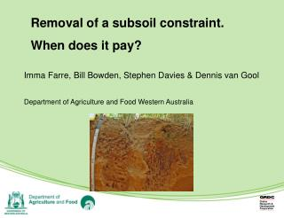 Removal of a subsoil constraint. When does it pay?