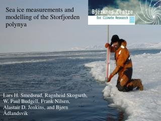 Sea ice measurements and modelling of the Storfjorden polynya