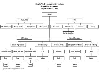 Trinity Valley Community  College Health Science Center Organizational Chart