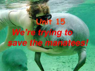 Unit 15 We're trying to save the manatees!