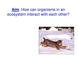 Aim : How can organisms in an ecosystem interact with each other?