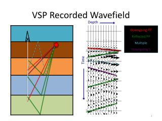 VSP Recorded  Wavefield