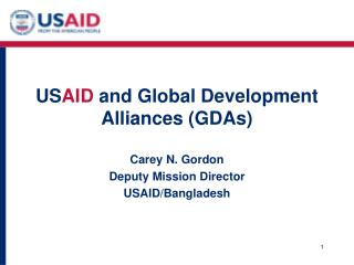US AID  and Global Development Alliances (GDAs)