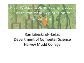 Figs, Wasps, Gophers, and Lice: A Computational Exploration of  Coevolution