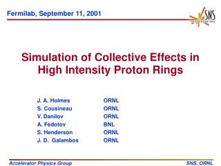 Simulation of Collective Effects in High Intensity Proton Rings