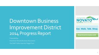 Downtown Business Improvement District  2014 Progress Report