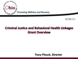 Criminal Justice and Behavioral Health Linkages Grant Overview