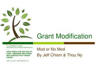 Grant Modification