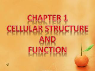 CHAPTER 1  CELLULAR STRUCTURE AND  FUNCTION