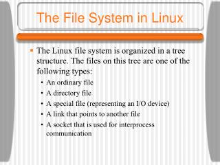 The File System in Linux