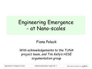 Engineering Emergence  - at Nano-scales