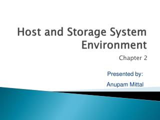 Host and Storage System Environment