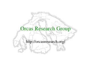 Orcas Research Group