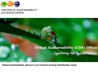 Virtual Sustainability (CSR) Office  Coaching  for  Sustainability
