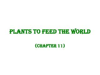 Plants to feed the world