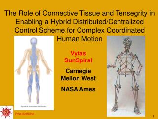 Vytas SunSpiral Carnegie Mellon West NASA Ames