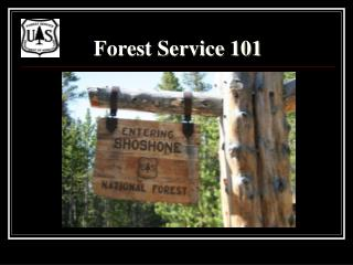 Forest Service 101