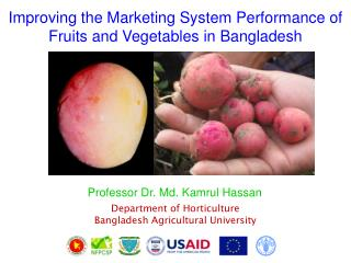 Improving the Marketing System Performance of Fruits and Vegetables in Bangladesh