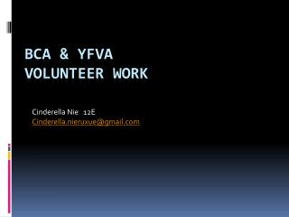 BCA & YFVA Volunteer work