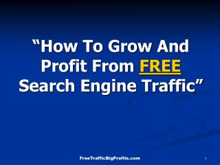 """How To Grow And Profit From  FREE  Search Engine Traffic"""