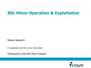 BSc Minor Operation & Exploitation