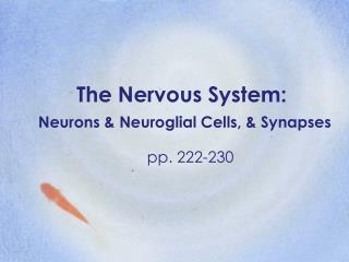 The Nervous System: Neurons & Neuroglial Cells, & Synapses