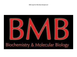 BMB Logo No DNA Black Background