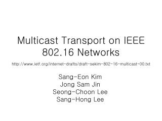 Multicast Transport on IEEE 802.16 Networks