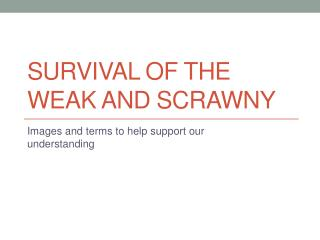 Survival of the weak and Scrawny