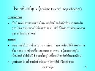 ?????????????? ( Swine Fever/ Hog cholera)