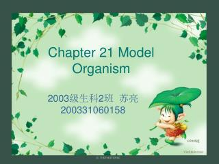 Chapter 21 Model Organism