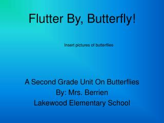 Flutter By, Butterfly!