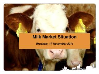 Milk Market Situation Brussels, 17 November 2011