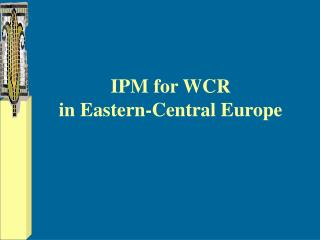 IPM for WCR  in Eastern-Central Europe