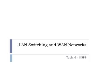 LAN Switching and WAN Networks
